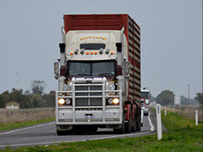 Farm transportation and trucking